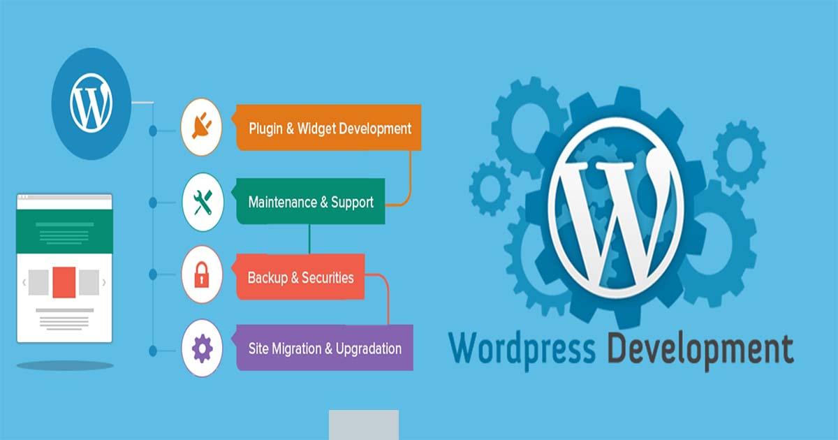 layout of WordPress development services
