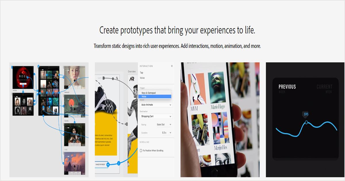 Adobe XD-vector based tool