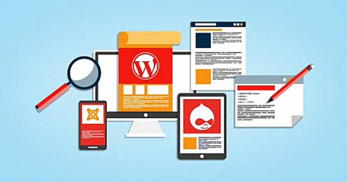 the wordpress CMS that allows the free source to use