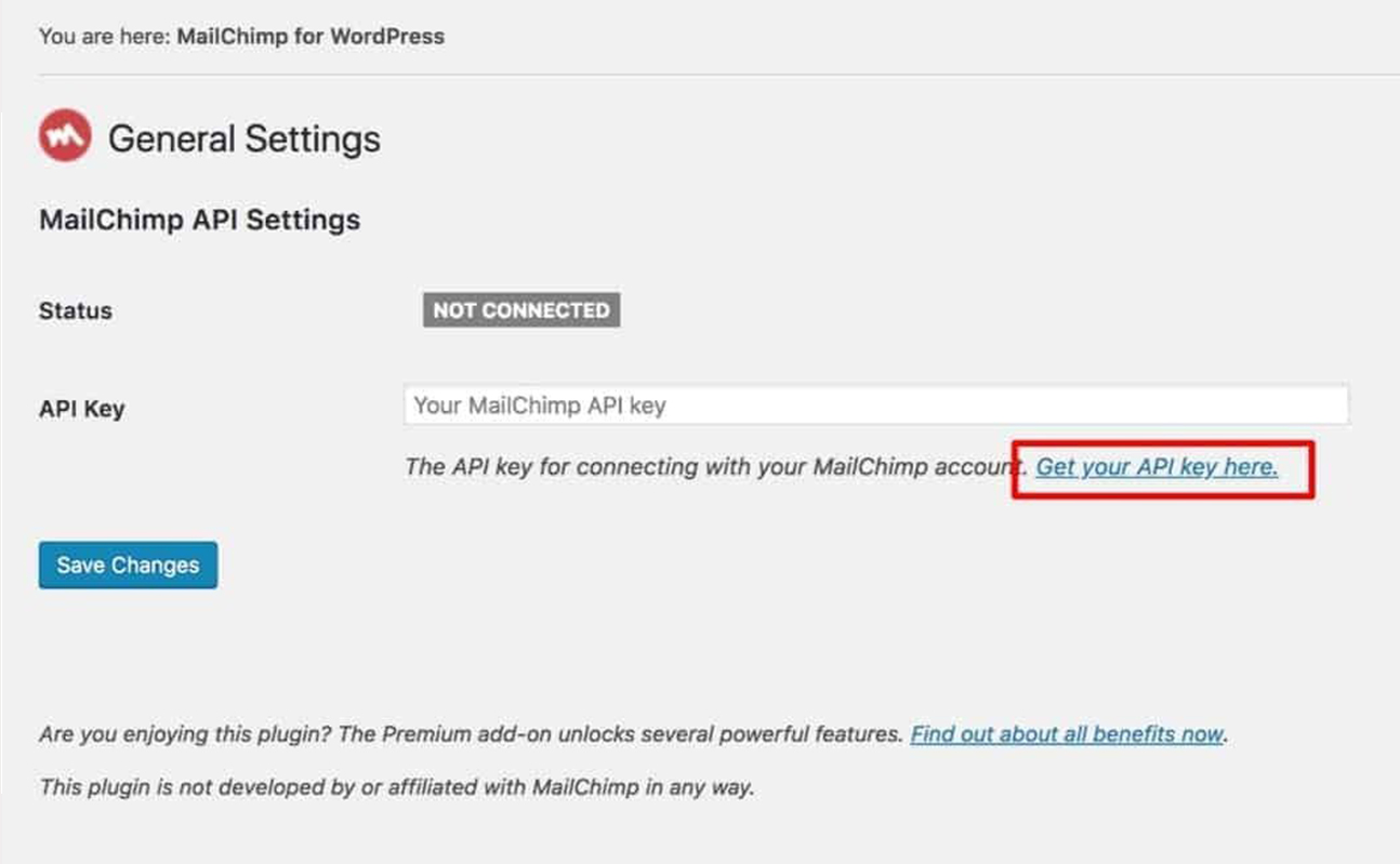 popup not showing connection with WordPress